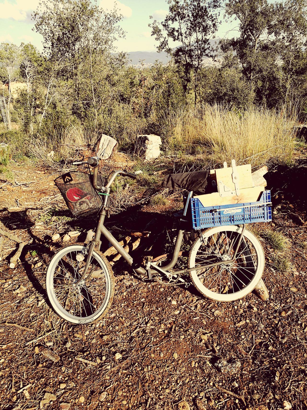 Bicicleta Peugeot Retro.