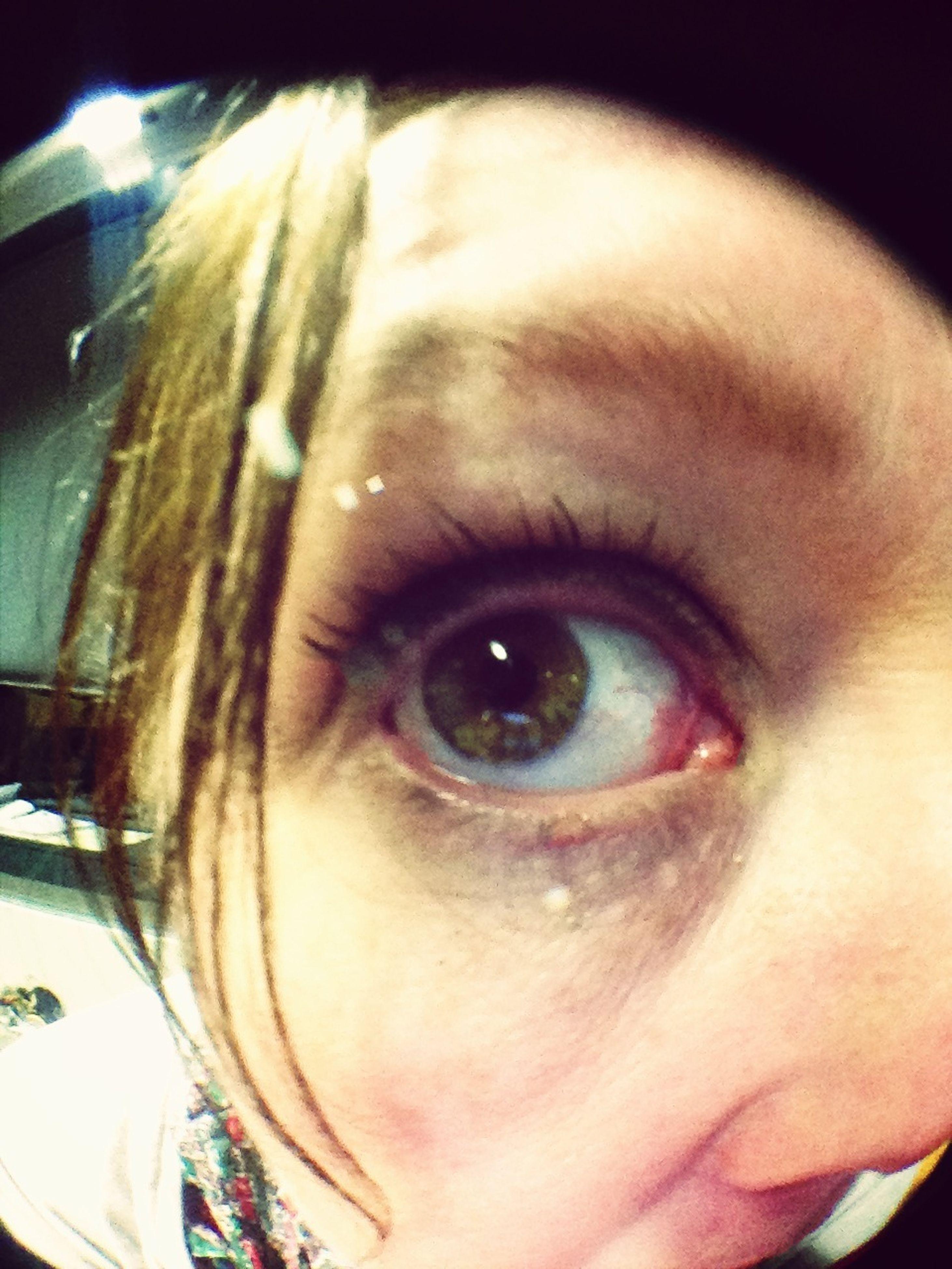 close-up, human eye, looking at camera, portrait, headshot, human face, eyelash, eyesight, indoors, extreme close-up, extreme close up, eyebrow, sensory perception, part of, blue eyes, front view, eyeball