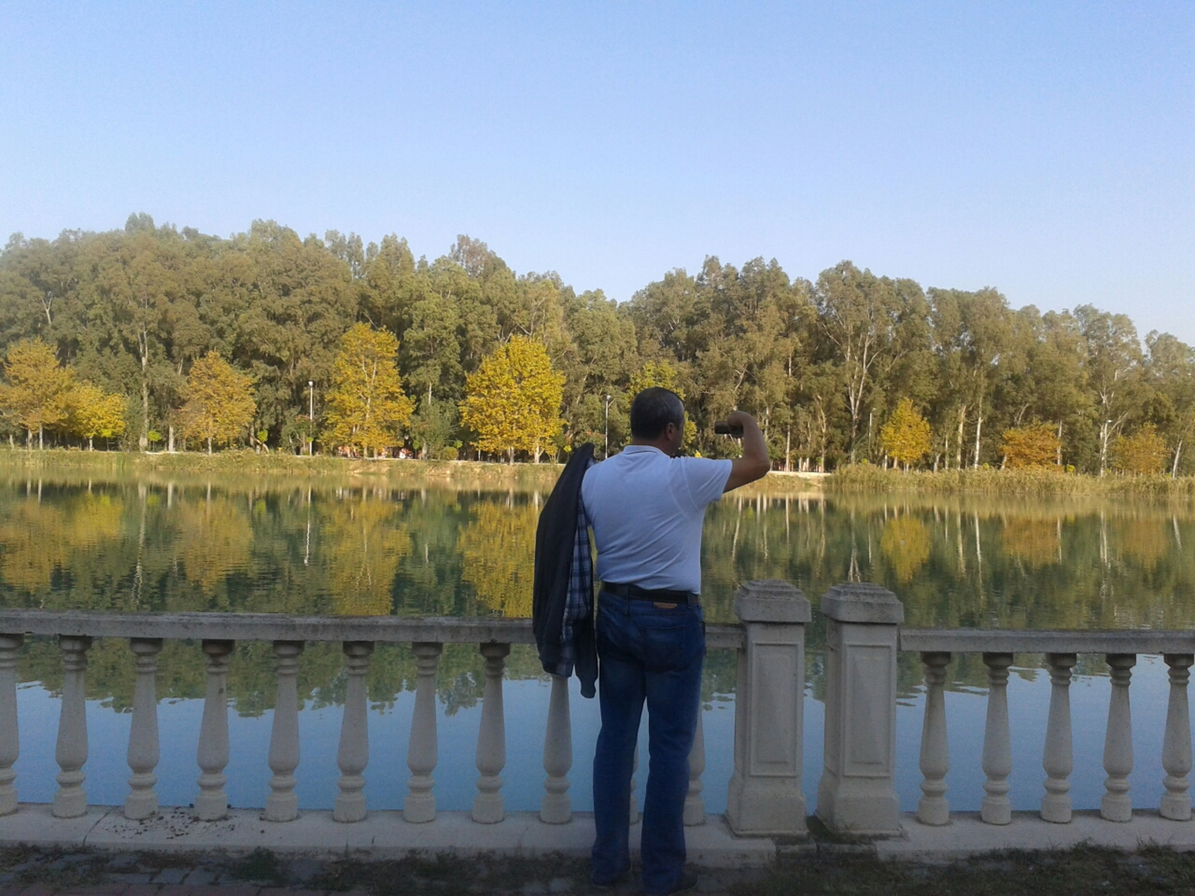 rear view, tree, clear sky, standing, lifestyles, water, leisure activity, casual clothing, full length, tranquility, tranquil scene, nature, railing, beauty in nature, men, person, scenics, lake