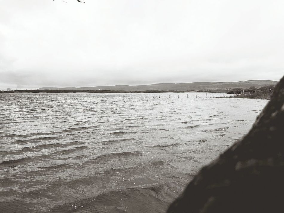 Farmland reclaimed Beach Sea Outdoors Sand Sky Nature Tranquil Scene Water Beauty In Nature Landscape Day Scenics No People Horizon Over Water Fence Submerged Flood Pond Nature Reserve Lake Tranquility Beauty In Nature Kenfig Winter Wintertime