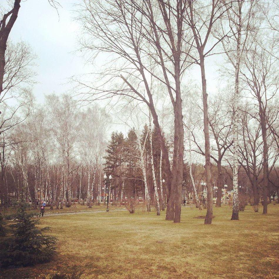 А в парке вообще весна! БикбаевПростоКосмос