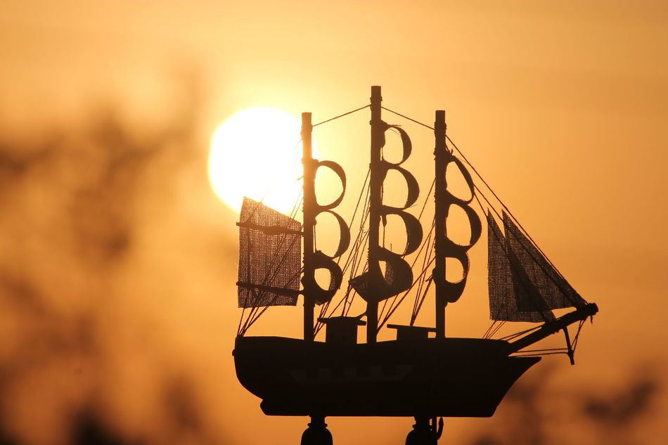 Beautiful stock photos of piraten, Close-Up, Focus On Foreground, Glowing, No People