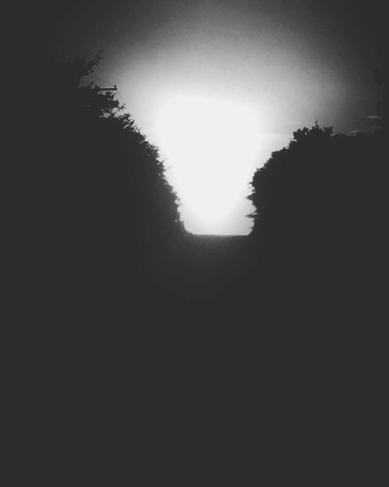 Unknown Dark Outline Sky Scenics Silhouette Copy Space IPhone The Drive Overnight Success Backgrounds Blackandwhite Night Light Light And Shadow Darkness And Light Road Country Country Road Journey Path Treelined Trees Backroads Dirt Road