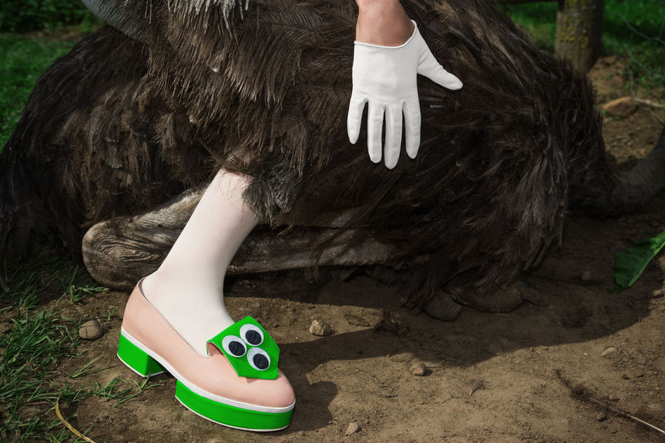 Where am I? Who are you? Avant-garde  Eyes Fashion Feathers Gloves Grass Green Ground Legs Linas Was Here Ostrich Shoes White