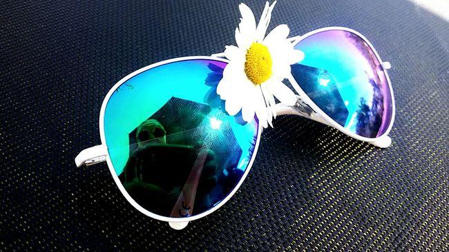 Summertime Sunclasses Enyoing Life Flowers 🌼🌼🌞