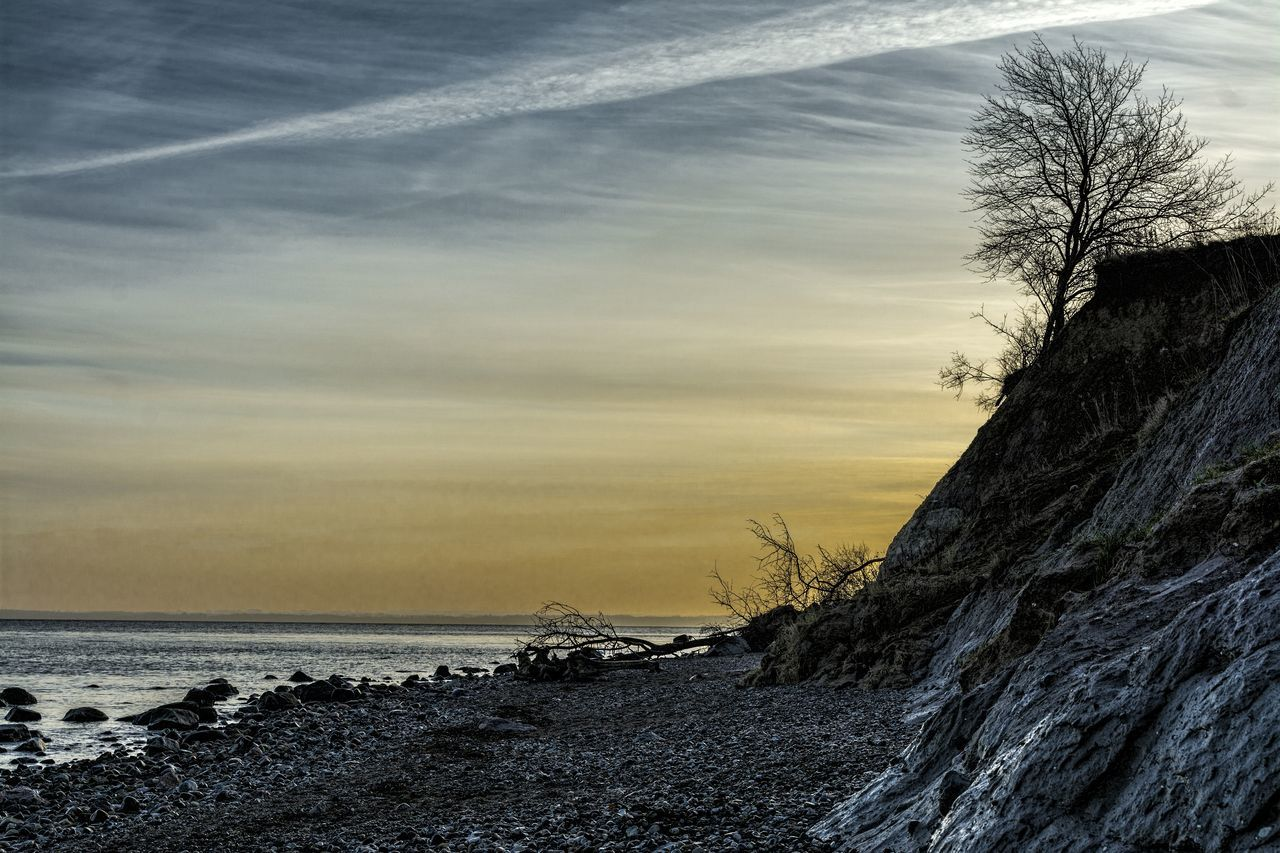 sea, nature, horizon over water, sky, tranquil scene, beach, tranquility, beauty in nature, water, scenics, outdoors, no people, tree, day