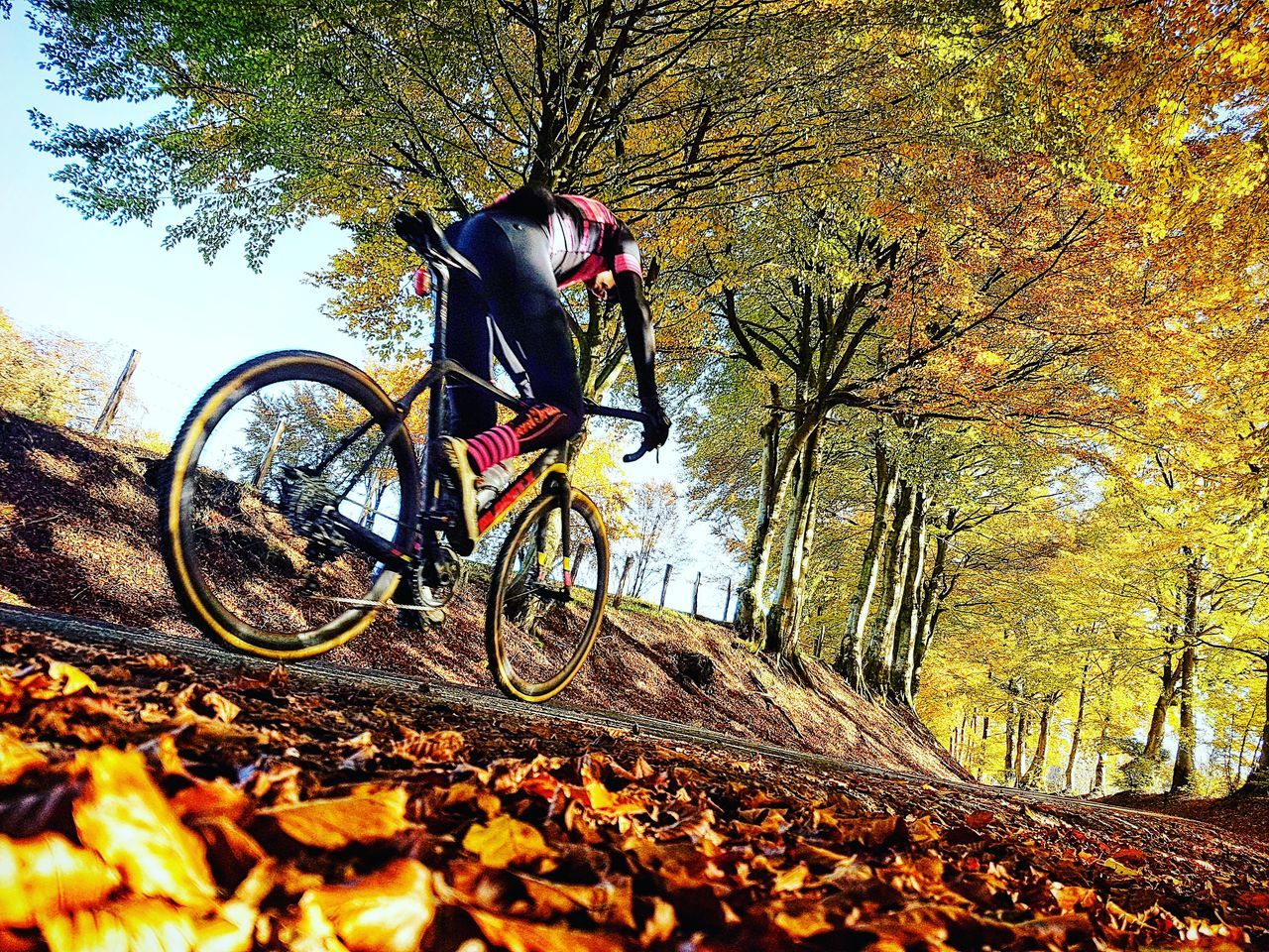 Cycling Bicycle Cyclist Cx Autumn Autumn Colors
