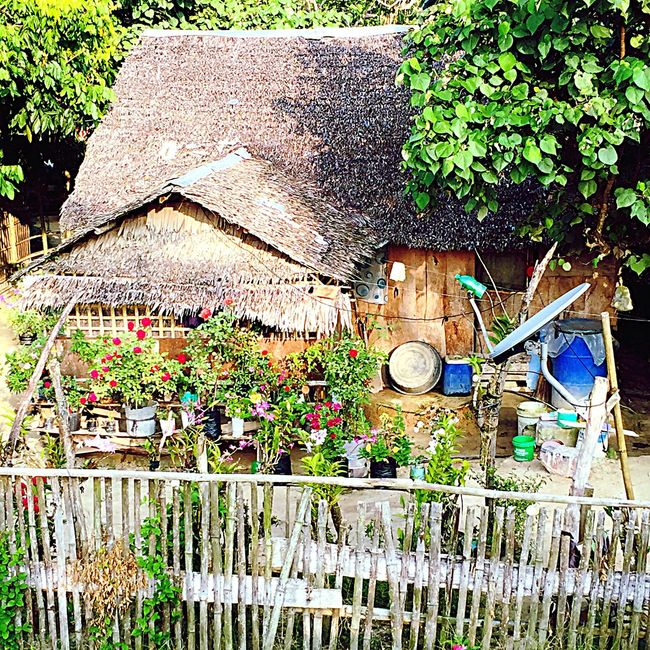 Nipa Hut Philippines Photos Home Sweet Home Country Life