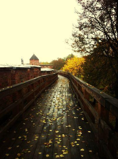 осень в великом новгороде)