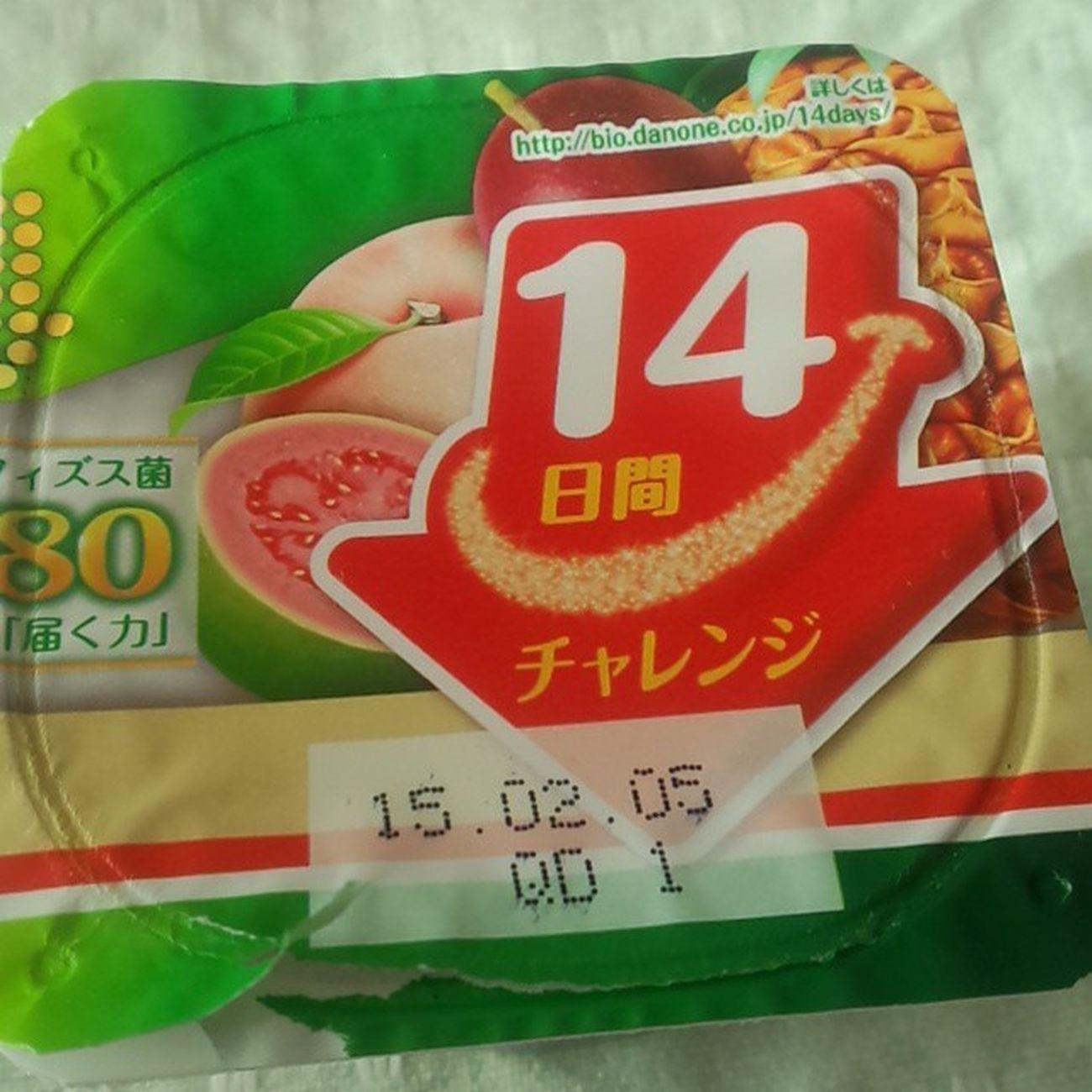 14日間チャレンジ中 ビフィズス菌 脂肪ゼロ チャレンジ 14日間