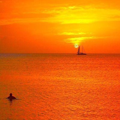 Ig_grenada PureGrenada Livefunner Uncoveryours Westindies_landscape Ig_caribbean Amazingphotohunter Andyjohnsonphotography Theblueislands Ilivewhereyouvacation Pocket_beaches Photo_storee Ig_latinoamerica WORLD_BESTSKY Loves_caribbeansea Loves_puertorico Colors_ofourlives World_beautiful_landscapes Igbest_shotz Ig_today Ig_serenity Ig_puertorico Sunsets_sxmrrcadz Sunsets_ng Sunsetsareonme sunset_madnesssunsetsilhouettenature_sultansnature_of_our_world