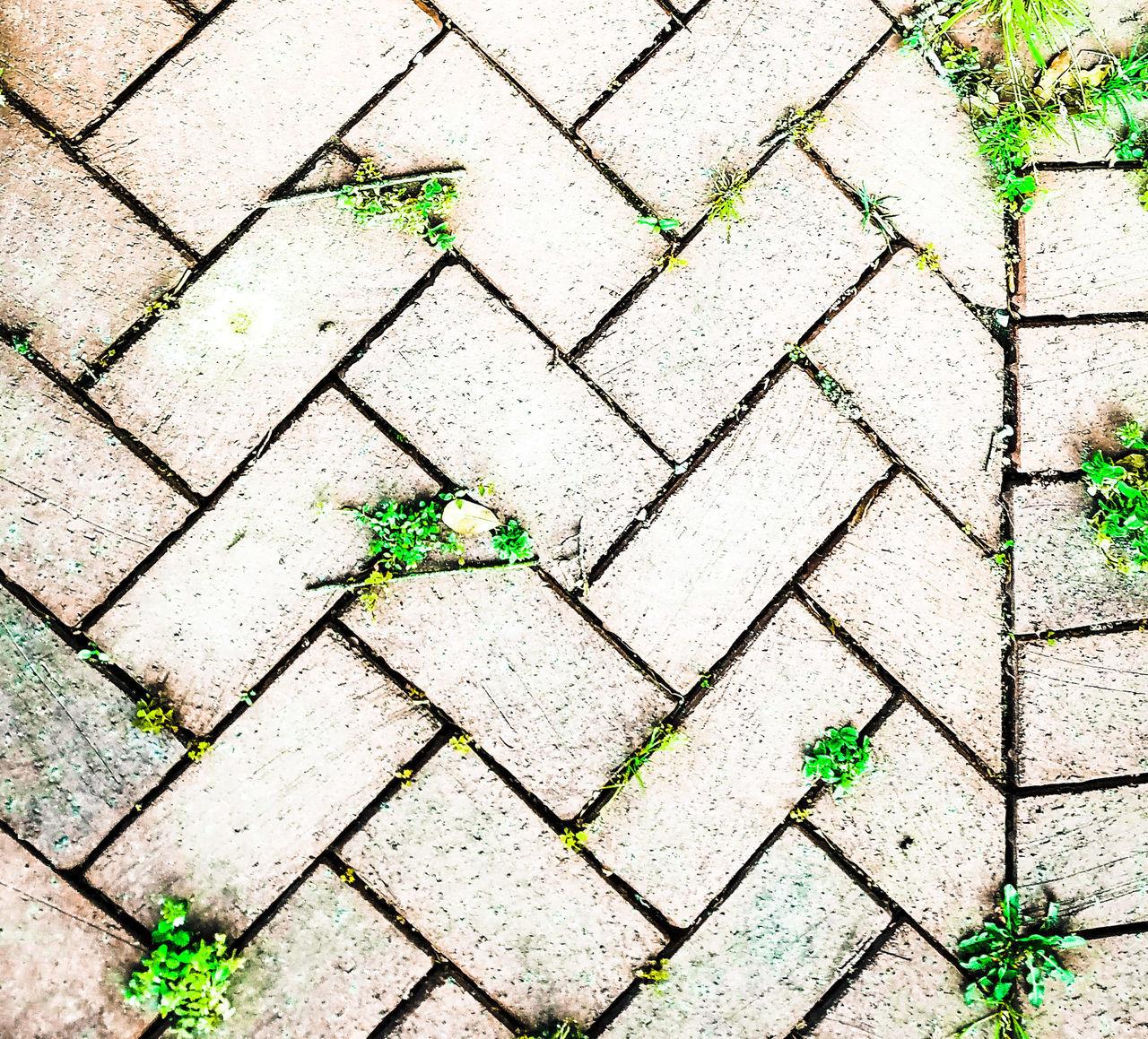 Picture of a brick walkway beneath me. Bricks Walkway Just Clicking Beneath My Feet Weeds In The Cracks EyeEmNewHere