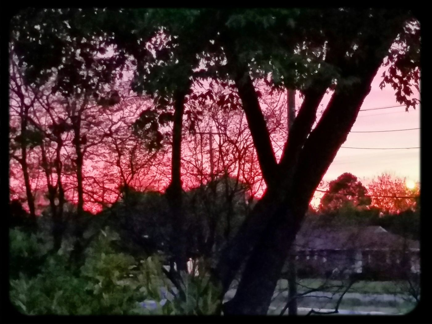 The Colors Of The Sky No Edit/no Filter Good morning my world wide folk. .?✌✌