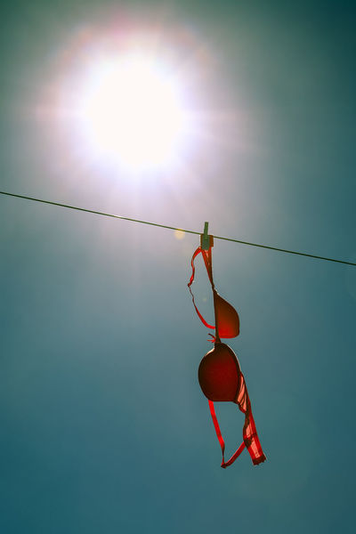 Bras drying on a clothesline on a warm sunny day Feminine  Household Chores Housework Laundry WashDay Washing Bra Bras Clear Sky Clothes Clothes Peg Clothesline Clothespins Cup Size Day Drying Clothes Lingerie No People Outdoors Sky Sun Sunny Day Underware Warm Weather Washing Line