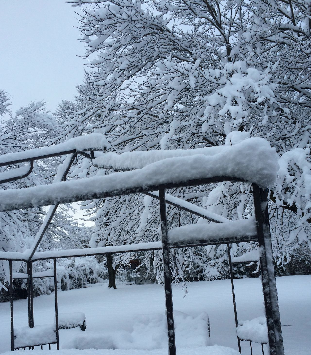 Beautiful stock photos of erntedankfest, Bare Tree, Beauty In Nature, Cold Temperature, Covered