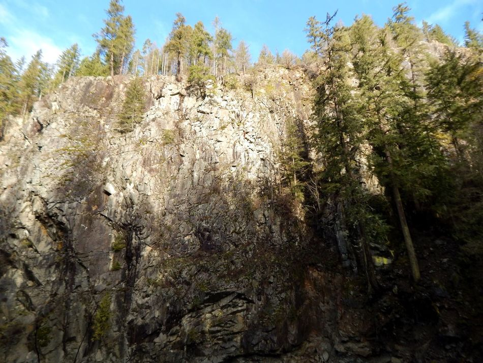 Rock cliff Tree Nature Growth Sunlight Beauty In Nature Outdoors Day No People Scenics Tranquility Sky Close-up Granite Falls Wa