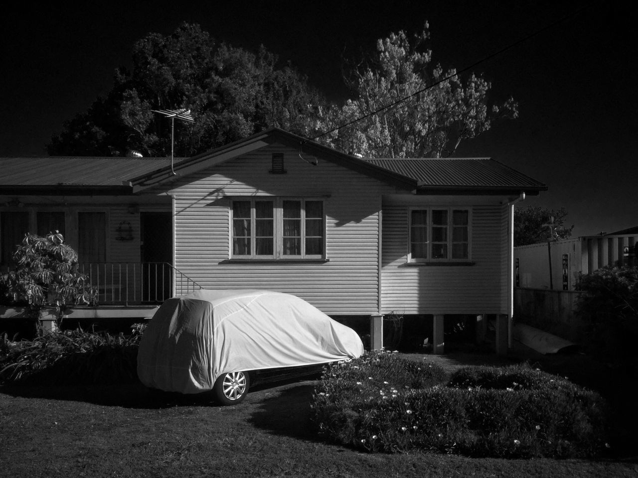 Tree House Built Structure Building Exterior Outdoors Architecture No People Night Car Monochrome Photography Streetphotography_bw