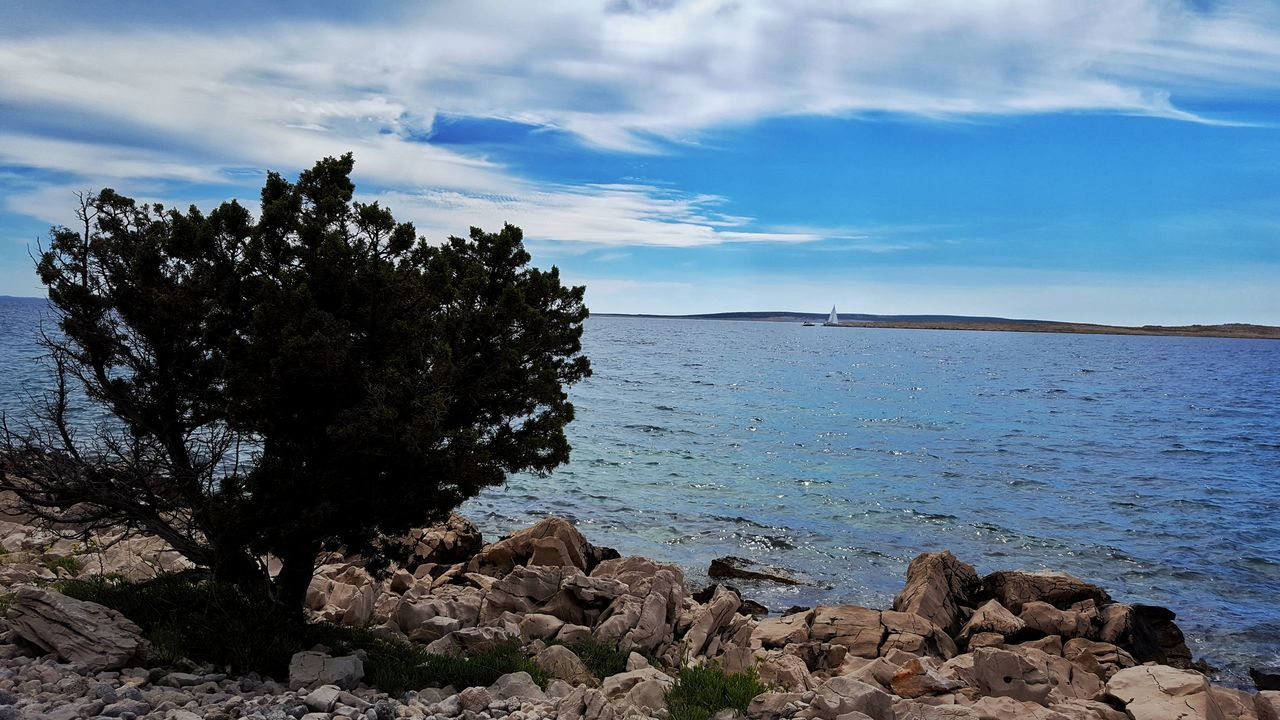 rock - object, nature, beauty in nature, sky, water, tree, tranquility, scenics, day, tranquil scene, no people, sea, cloud - sky, outdoors