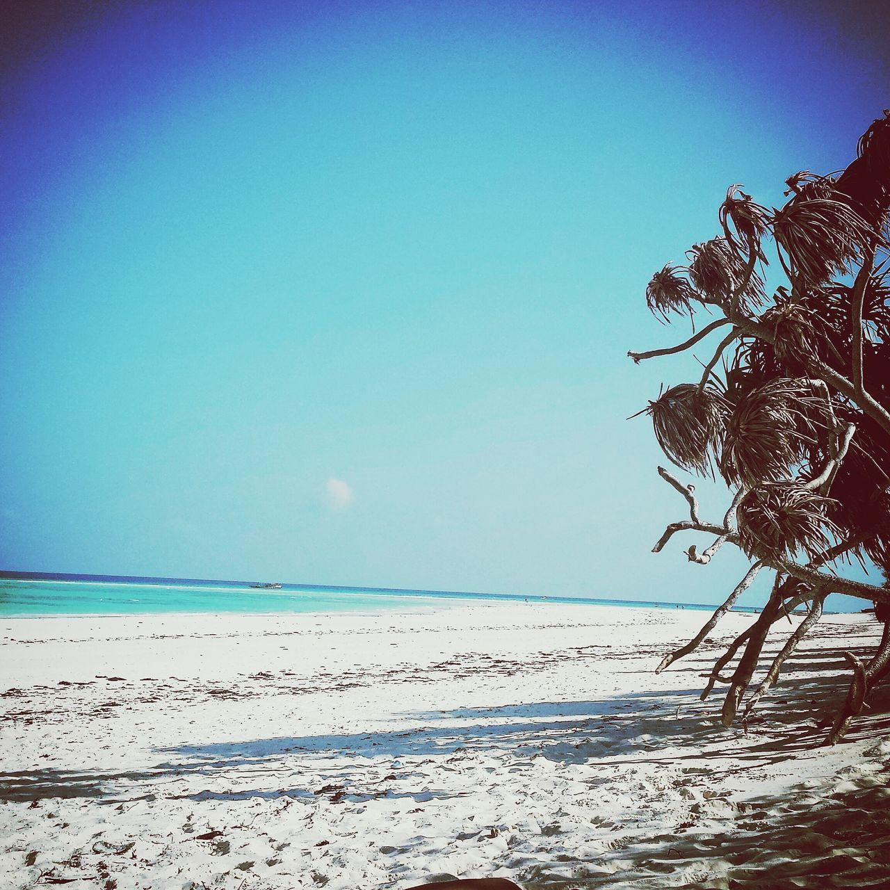 sea, horizon over water, beach, clear sky, nature, copy space, scenics, water, blue, beauty in nature, tranquility, tranquil scene, day, sand, outdoors, no people, sky
