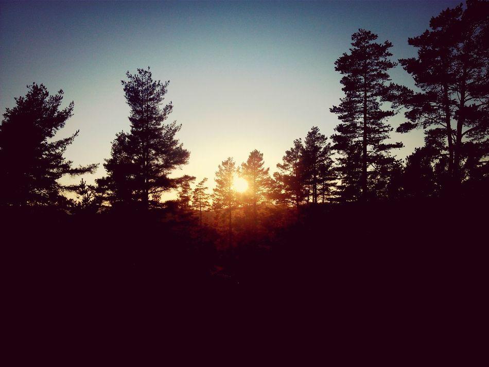 Beautiful Nature Favorite Places Sunset #sun #clouds #skylovers #sky #nature #beautifulinnature #naturalbeauty #photography #landscape