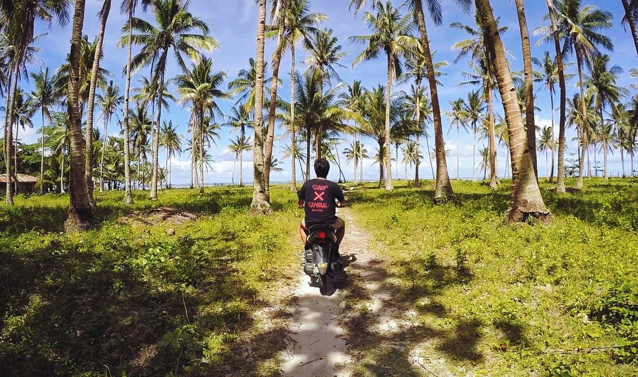 It's more fun in the Philippines! The Great Outdoors - 2017 EyeEm Awards Lost In The Landscape Connected By Travel EyeEmNewHere Beach Motorcycle Palm Trees Palm Tree Philippines Siargao Itsmorefuninthephilippines Love Cloud 9 Second Acts Philippines Photos Motor Motorbike Motorcycle Photography Ocean View Beauty In Nature Beachphotography Beach Day ASIA Gopro Perspectives On Nature Be. Ready. Perspectives On People EyeEm Ready