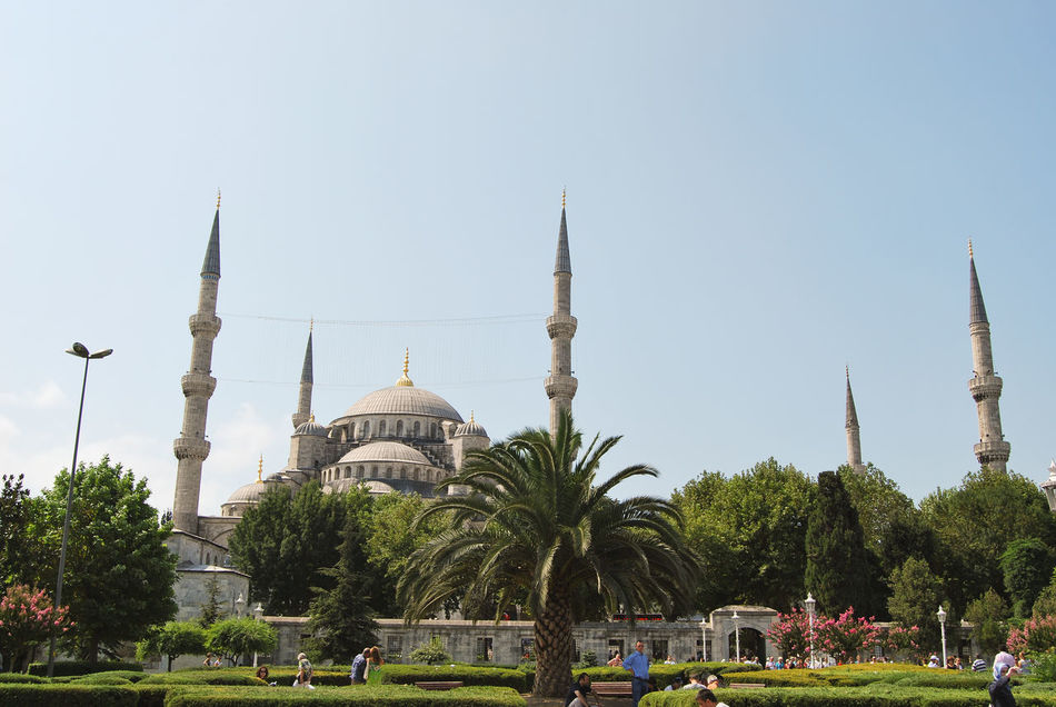 Beautiful stock photos of palm tree, Architecture, Blue Mosque, Bright, Building Exterior