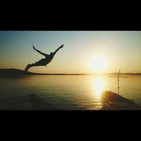 Pasalimaniadasi Paşalimanı Freedom Sea sunset birds swimming 😊😊😊