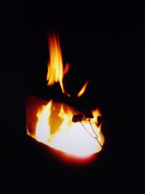 Bonfire with friends Bonfire Fire Fire Camp Marshmallows