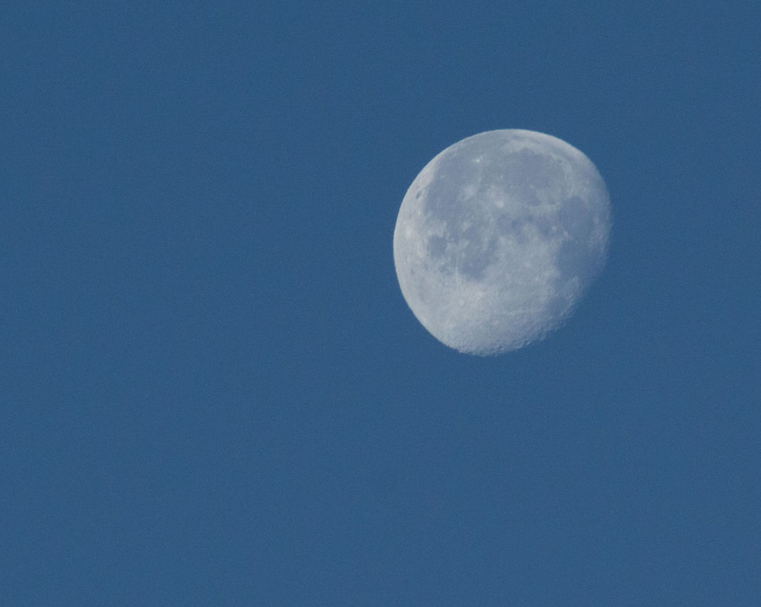 Background Photography Beauty In Nature Blue Clear Sky Moon Moon At Sunrise Moon Surface No People Waning Moon