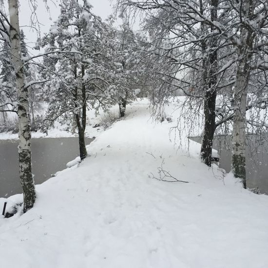 Check This Out Snow ❄ Landscape Hanging Out Finland Mänttä