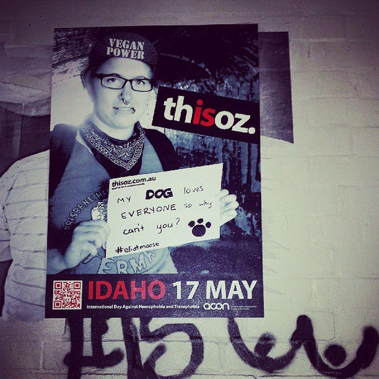 Thisisoz Idaho2013