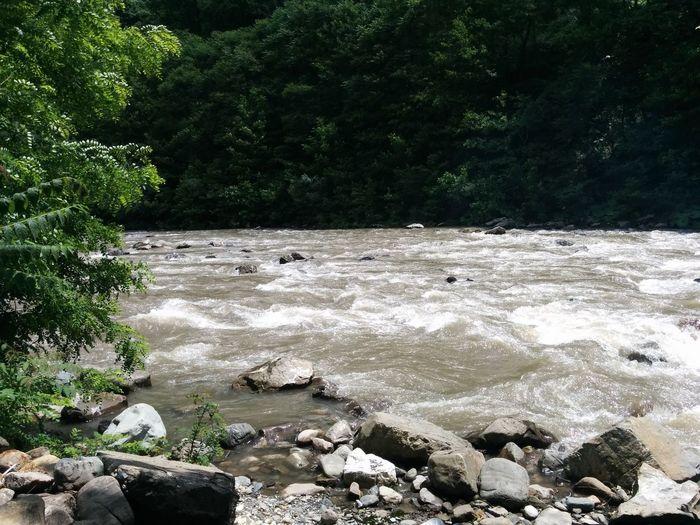 Picnic River Relaxing Camping