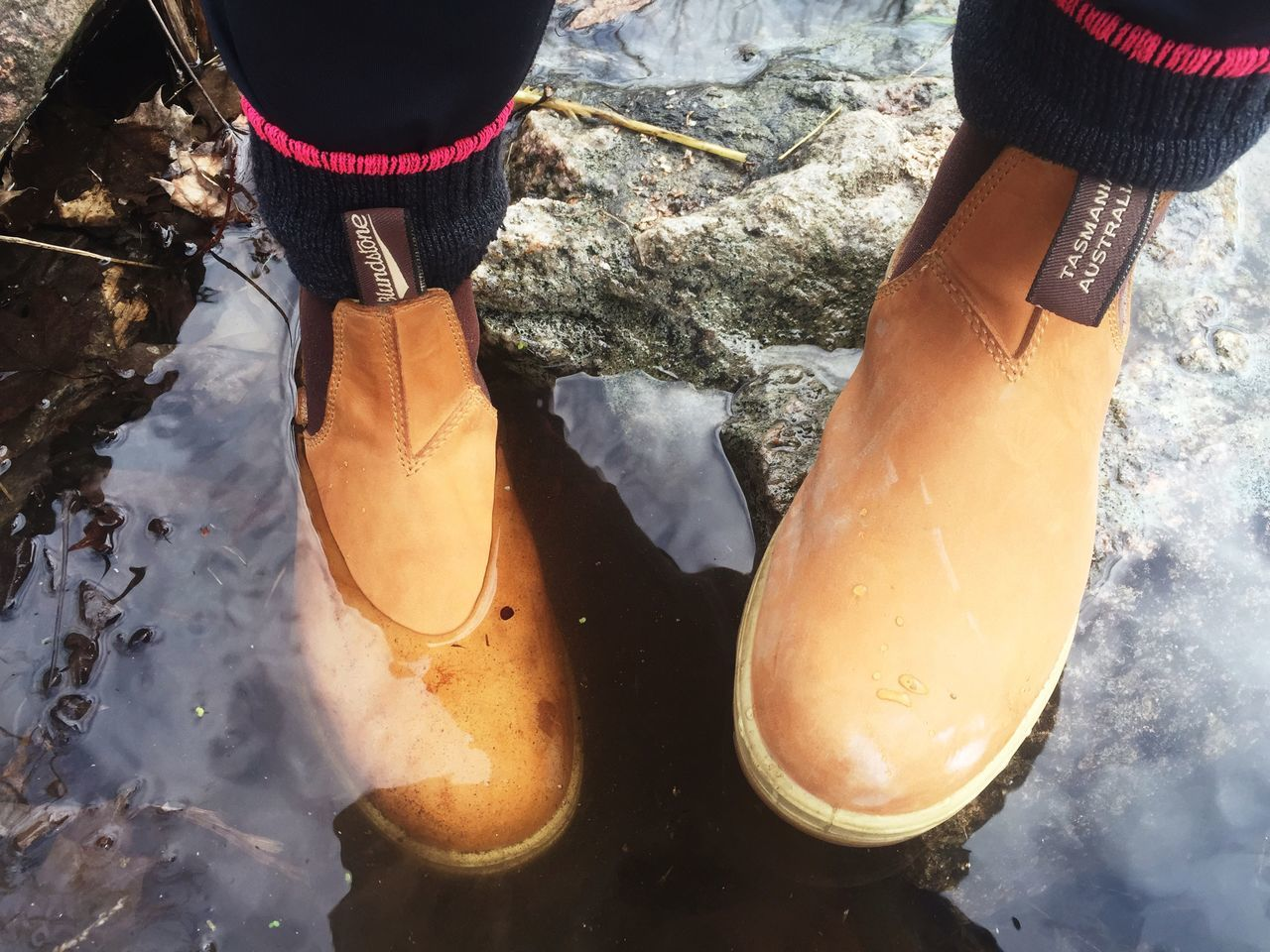 My Blundstone Boots waterproof and comfy....