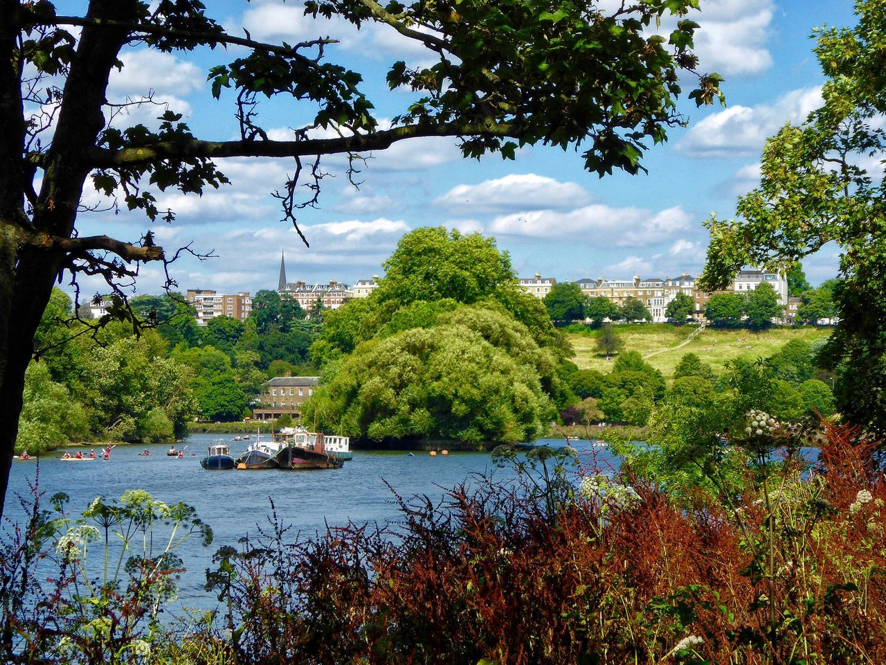 London LONDON❤ Thames Thames River Thamesriver River Riverside Riverscape River Thames Ham Petersham View of Richmond Upon Thames Landscape Landscape_Collection Landscape_photography