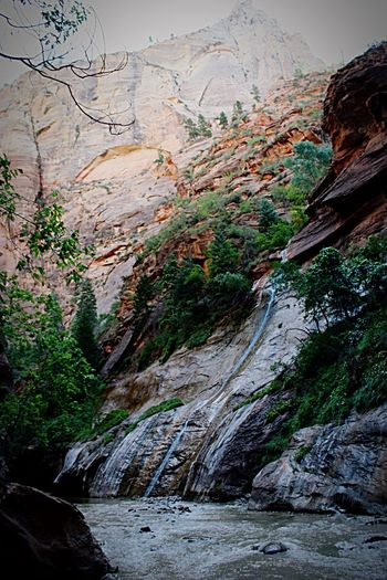 Walking in The Narrows ~ Zion National Park Eye4photography  OpenEdit EyeEm Best Shots - Nature EyeEm Nature Lover EyeEm Best Shots EyeEmBestPics USA Nature