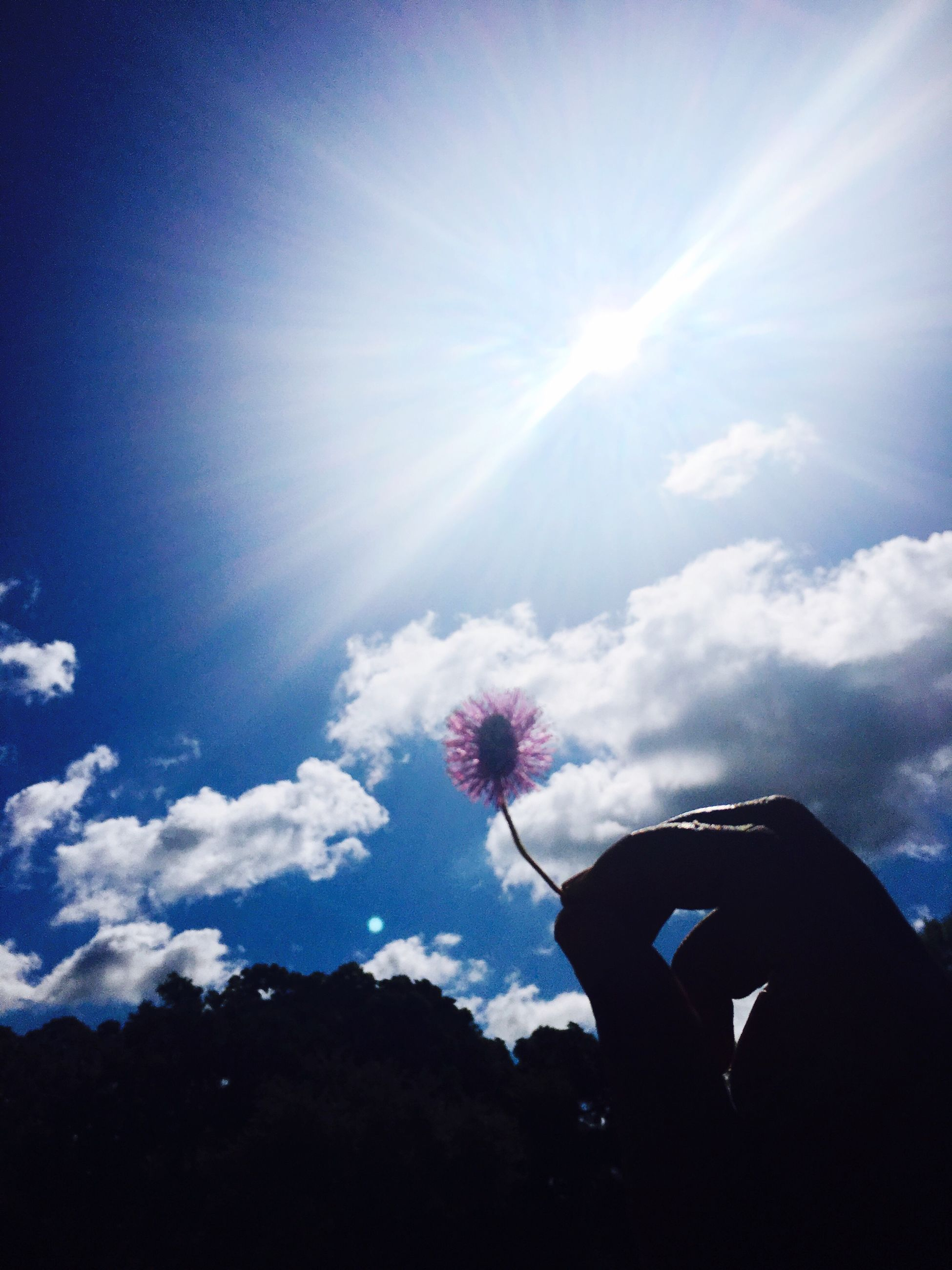 silhouette, sky, sunlight, sunbeam, leisure activity, beauty in nature, sun, nature, cloud - sky, low angle view, lifestyles, blue, unrecognizable person, flower, cloud, men, scenics, tranquility