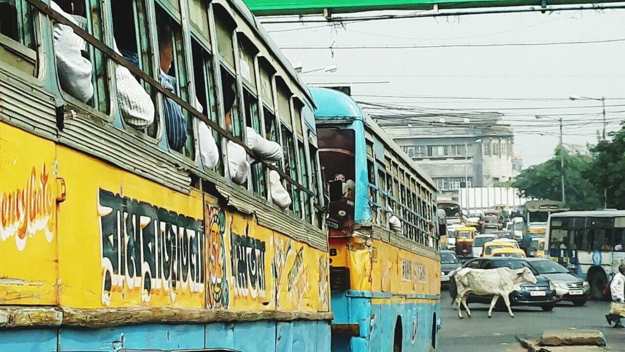 Kolkata Calcutta Traffic India Transport India Bus India Indian Cow