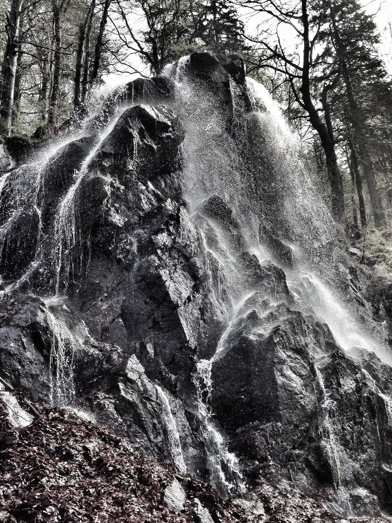 Niagara falls is everywhere EyeEm Nature Lover IPhoneography Walking Around Bad Harzburg