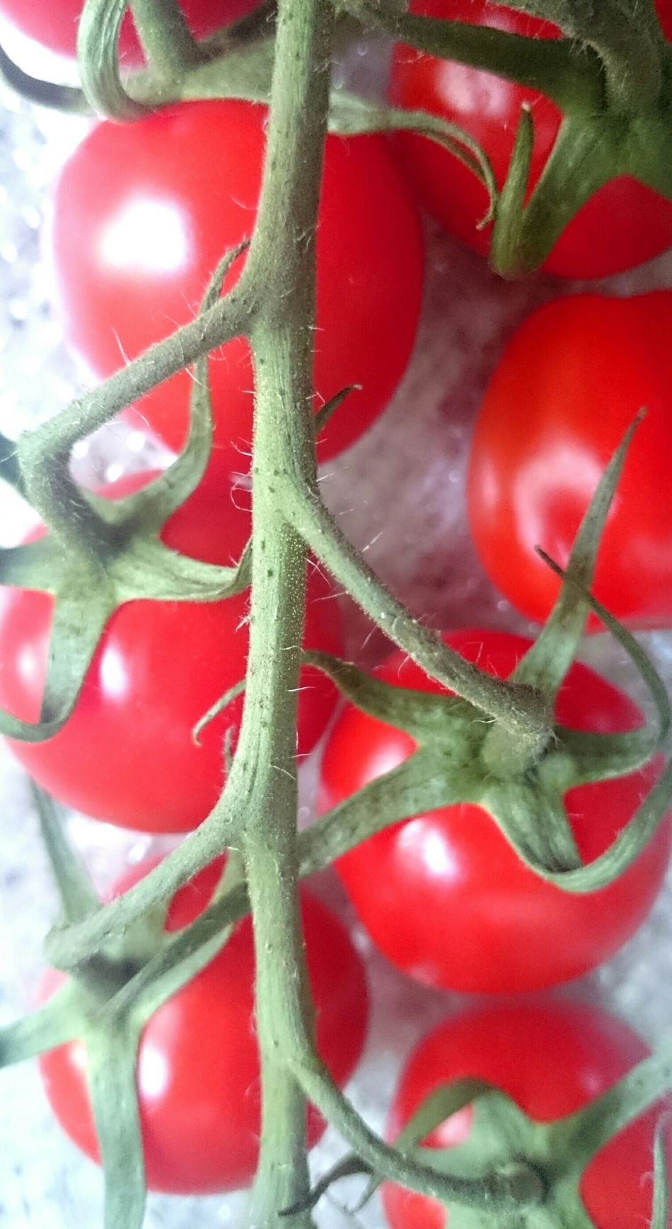 Tomato Summer Vegatable Red Healthy