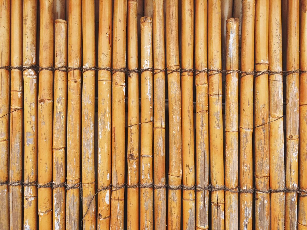 Bamboo fence. Full Frame Backgrounds Pattern Close-up No People Textured  Yellow Day Outdoors Bamboo