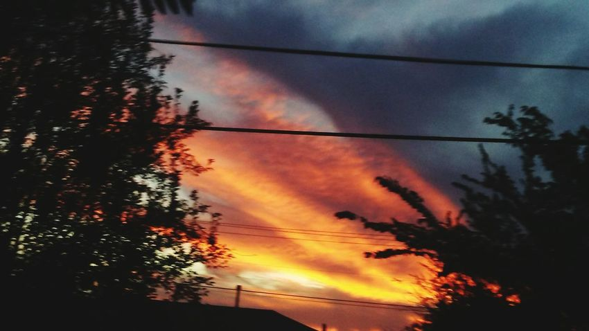 Low Angle View Power Line  Scenics Silhouette Sunset OklahomaSkies Oklahoma Okie Skys Clouds Collection Beauty In Nature Outdoors Backgrounds sunset #sun #clouds #skylovers #sky #nature beautifulinnature naturalbeauty photography