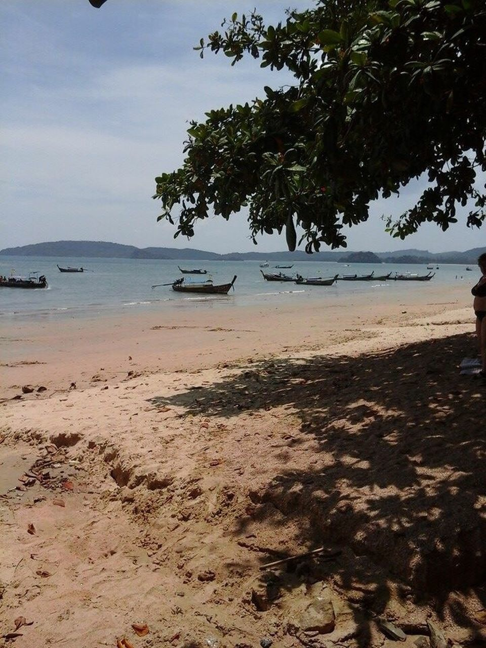 beach, water, shore, sea, sand, nature, tranquility, beauty in nature, scenics, tree, tranquil scene, sky, outdoors, day, no people, horizon over water