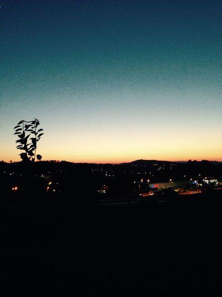 Noeffect Sunset Nature Evening Withfriends View Braga Dégradé