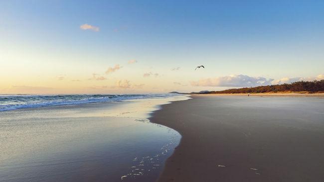 Beach Beauty In Nature Cloud - Sky Coastline Idyllic Nature Non-urban Scene Ocean Sea Shore Tranquil Scene Tranquility