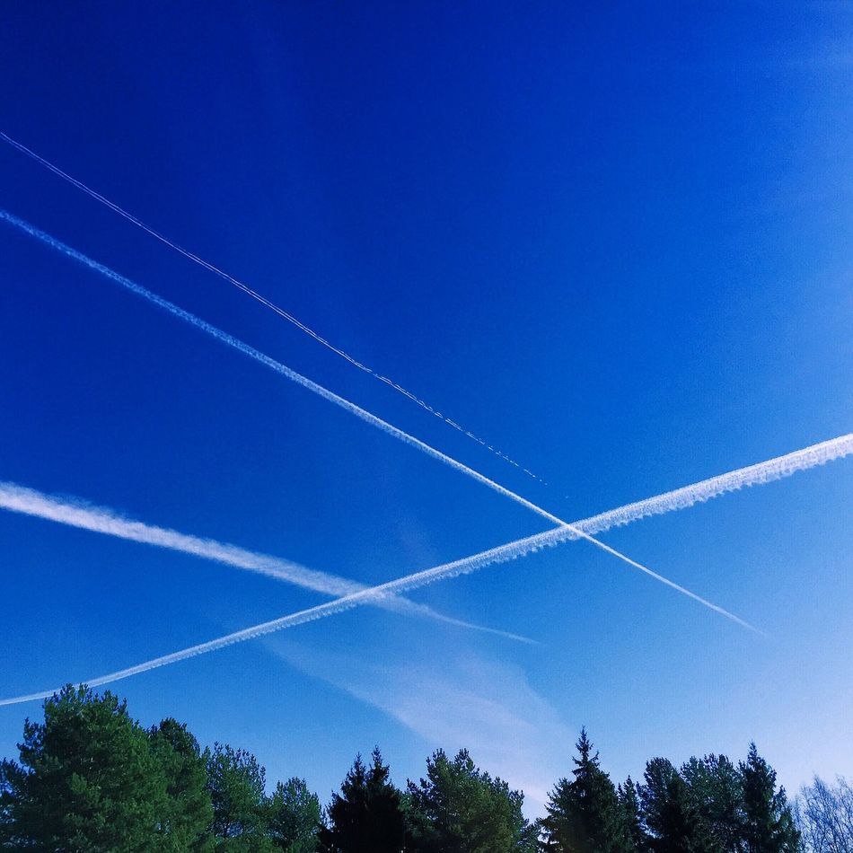 Airplane trails on the blue skies Air Ariplane Atmosphere Aviation Blue Sky Chemtrail Chemtrails Climate Change Condensation Conspiracy Contrail Contrails Ecology Environment Environmental Awareness GeoEngineering Global Mark Plane Pollution Theory Track Trails Transportation Trees