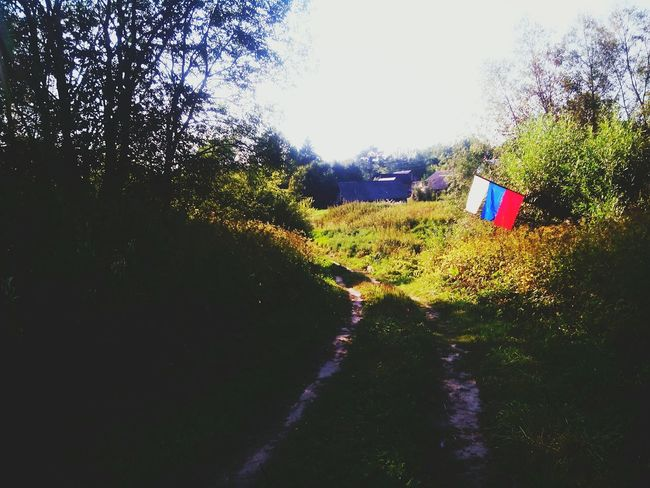 Summer Summertime Summer In Village Village Village Life Village View Village Road Flag Russian Nature Russian Flag Tricolor Russian Tricolor Russia Tula, Russia Tula Tula's Nature Enjoying Life Check This Out Relaxing Taking Photos