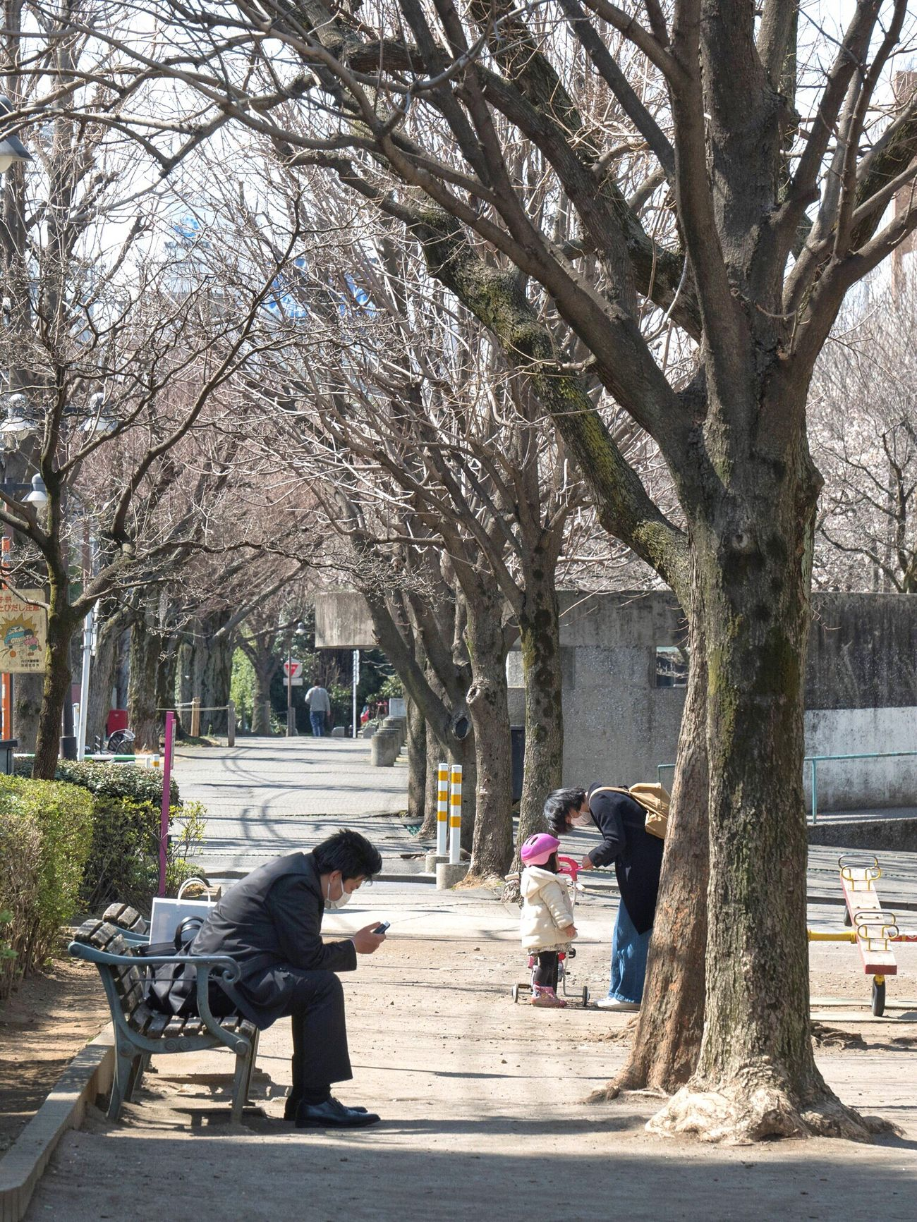 Tree Real People Bare Tree Walking City People Snapshot CityWalk Streetphotography On The Road City Life City Street Spring Is Coming  Lunchtime Hatsudai 初台 Tokyo Japan