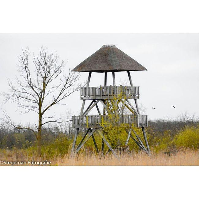 """""""Vogeluitkijktoren"""" Vogeluitkijk Nederland Friesland Netherlands fotografie photography"""