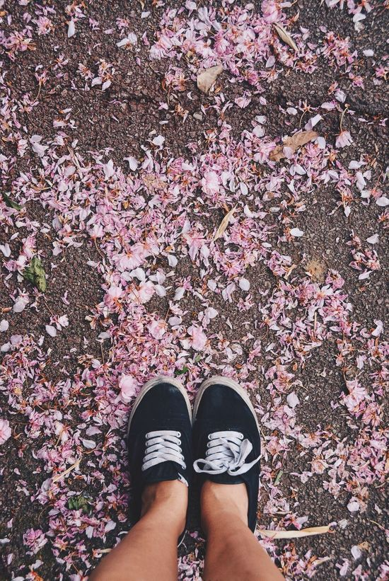 This was the last of spring, welcome summer! Seasons Happy Feet Looking Down Shoes Ground Flowers Flowers On The Ground Black Shoes Pink Flowers Pastel Power Pastel Pink Petals Colour Of Life Color Palette Two Is Better Than One Millennial Pink Out Of The Box Shoe