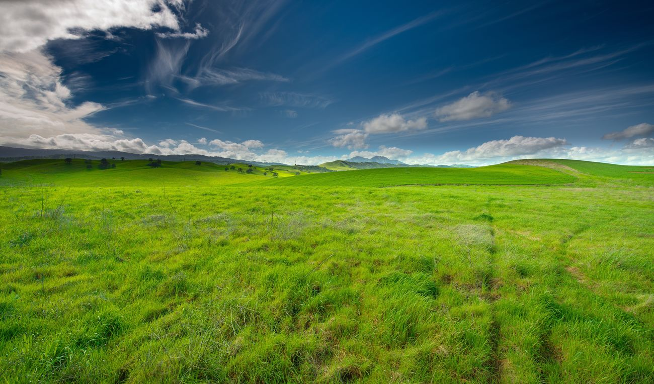 Love'n California After The Rains Landscape Green Color Nature Scenics Grass Sky Beauty In Nature Outdoors Springtime Field Environment Cloud - Sky Rolling Landscape Agriculture Pasture Day No People Freshness Green - Golf Course